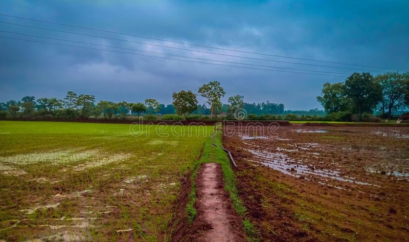 Two sides. Fields, composition, photography royalty free stock photography