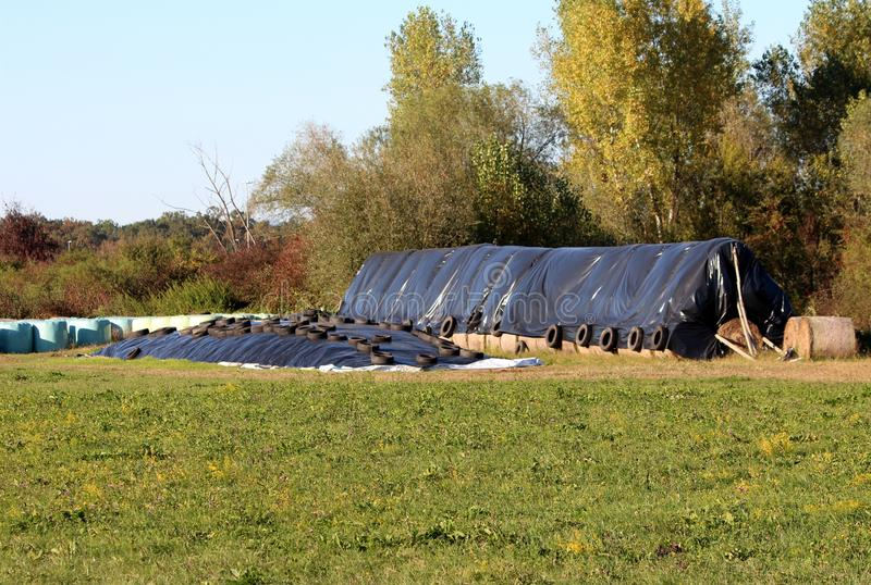 Two silage piles of fermented high moisture stored fodder covered with thick nylon and used car tyres with hay bales wrapped in. Two silage piles of fermented stock photos