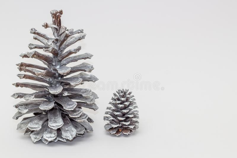 Two silver pine cones royalty free stock images