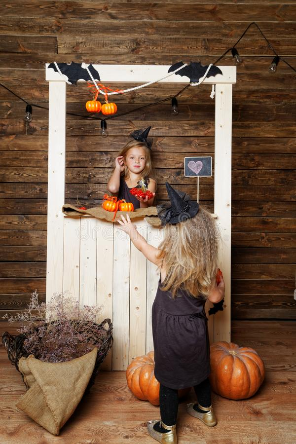 Two sisters in costumes of witches in the Studio with pumpkins. The concept of Halloween stock photography