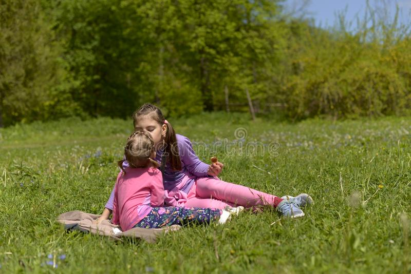 Two sisters had a picnic in a green meadow stock photo