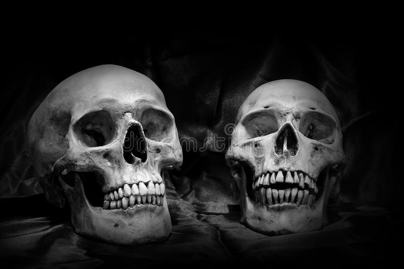Two skull and the candle on old wooden table in the cemetery with black background in night time / Still life image and adjustmen. T image black and white for royalty free stock photography