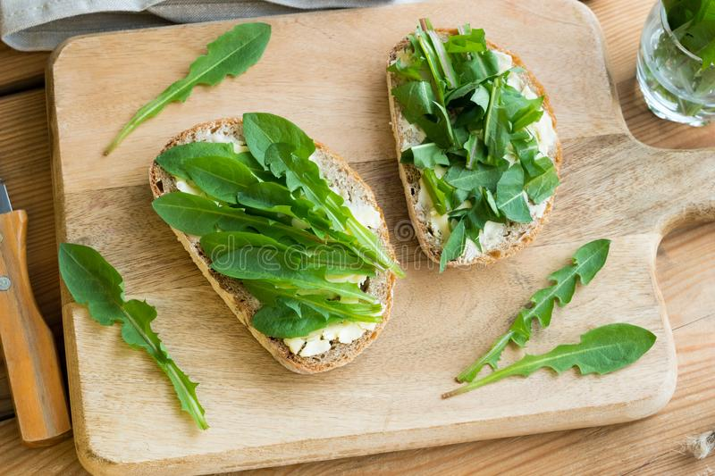 Two slices of sourdough bread with butter and dandelion leaves. Two slices of sourdough bread with butter and fresh dandelion leaves royalty free stock photo