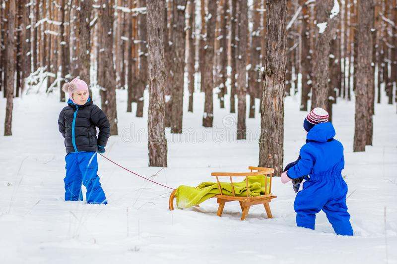 Two small children with sleds in the forest. Family walk in the woods. Two small children with sleds in the forest. Family winter walk in the woods stock image