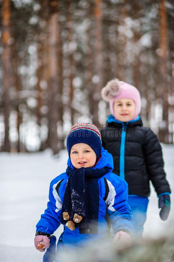 Two small children with sleds in the forest. Family walk in the woods. Two small children with sleds in the forest. Family winter walk in the woods royalty free stock photography