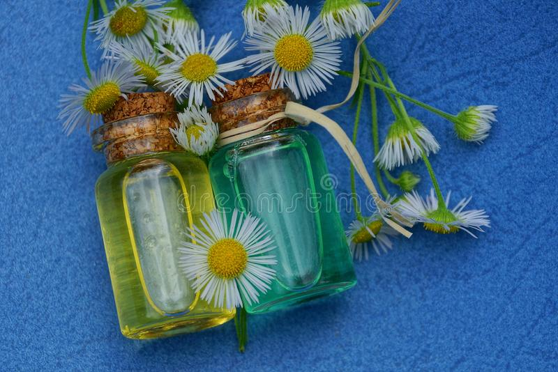 Two small glass bottles with oil among white daisies royalty free stock photos