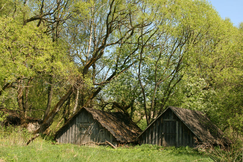 Two small houses in a wood stock photography