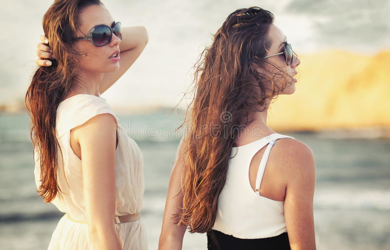 Download Two smiling beauties stock photo. Image of friendship - 22819320