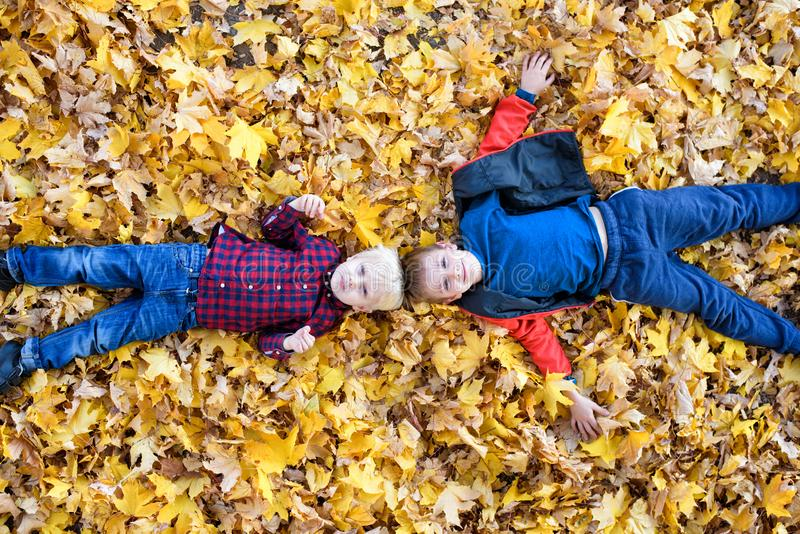 Two smiling boys lies in yellow autumn leaves. Top view. Autumn concept royalty free stock photo