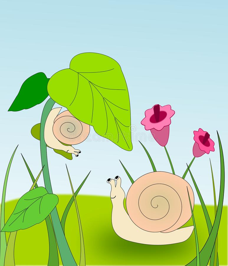 Two Snails royalty free illustration