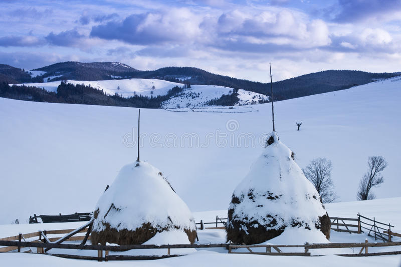 Two snowed haystacks stock photo