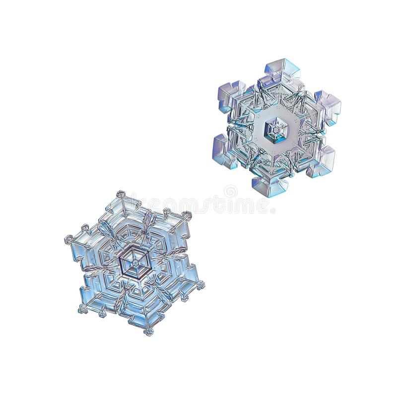 Two snowflakes isolated on white background. Macro photo of real snow crystals: small star plates with glossy relief surface, simple shapes, large central royalty free stock photography