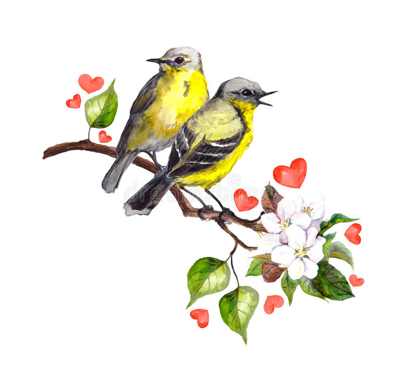 Two song birds on spring branch with leaves and flowers vector illustration