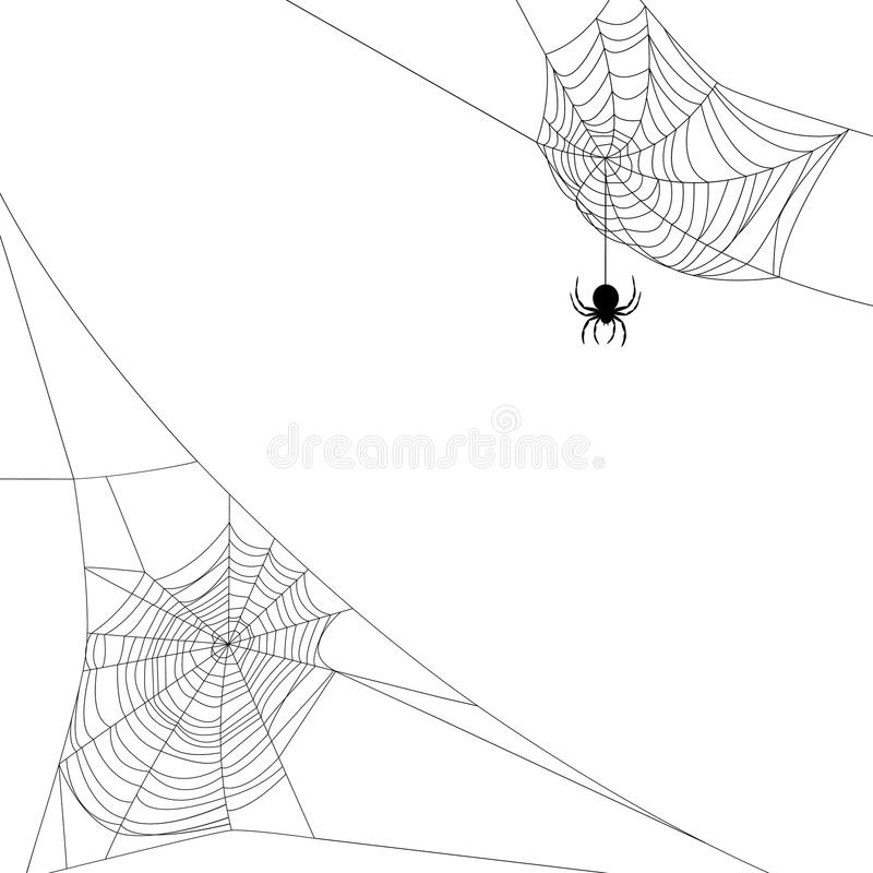 Two spider webs. Background with two spider webs on white royalty free illustration