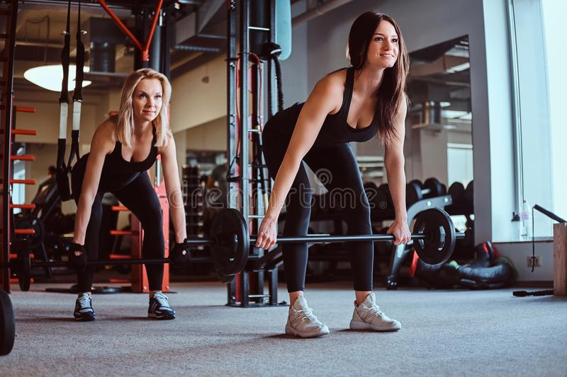 Two sportive female exercising with barbells doing deadlift in the fitness club or gym. royalty free stock photography