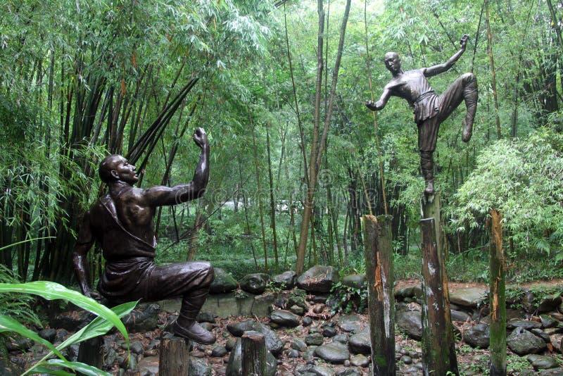Download Two sportsmen stock image. Image of leaves, ushu, kung - 26396221