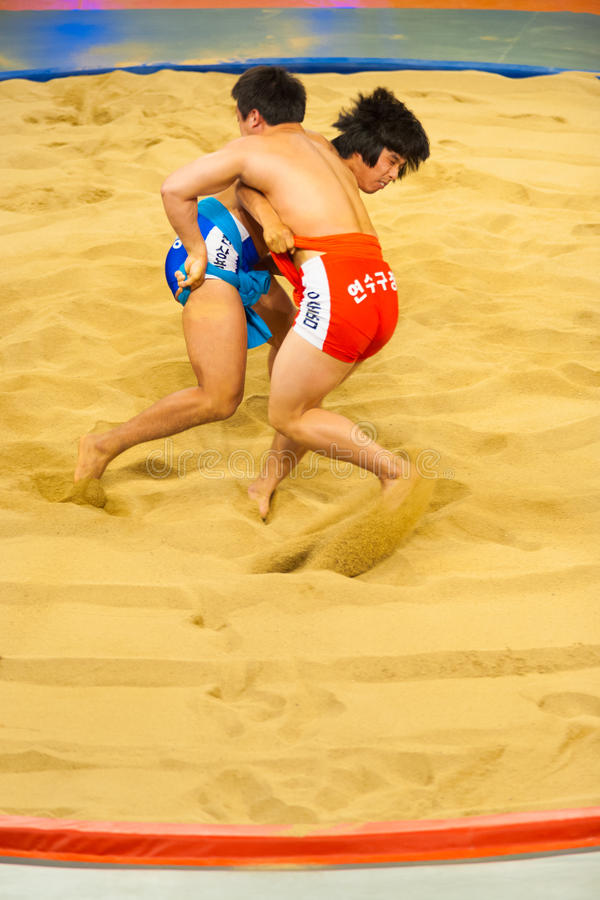 Two Ssireum Wrestling Korean National Sport. JEUNGPYEONG, KOREA - SEPTEMBER 18, 2009: Two unidentified ssireum wrestlers, the Korean national sport similar to royalty free stock photography