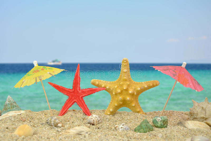 Download Two Star Fishes With Paper Umbrellas Stock Image - Image: 26556287