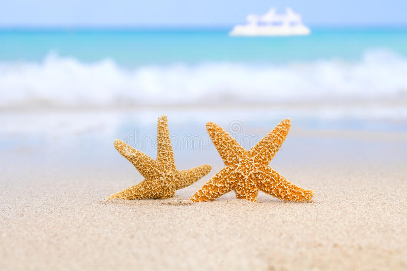 Two starfish on beach, blue sea and white boat. Shallow dof royalty free stock image