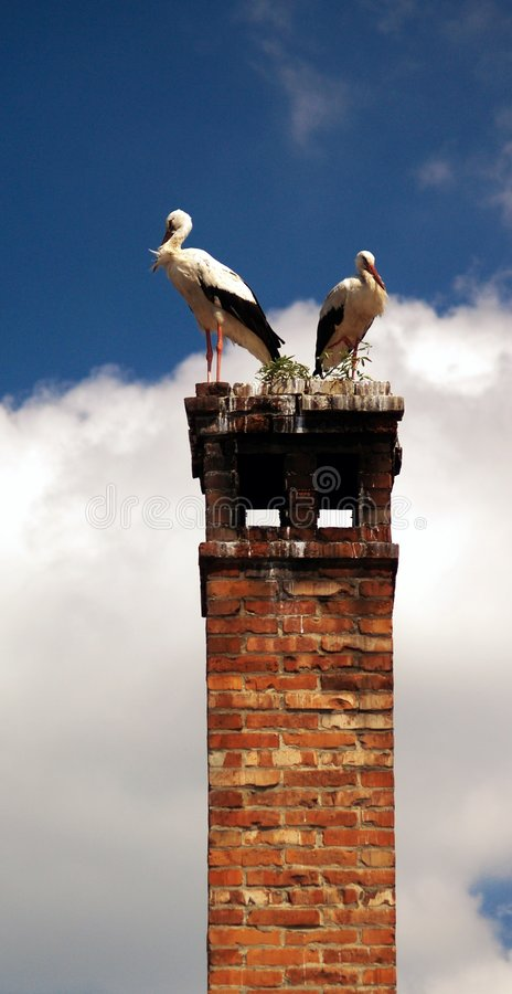 Two storks resting on chimney. Two stork birds resting on red brick chimney with blue sky and cloudscape background stock photography