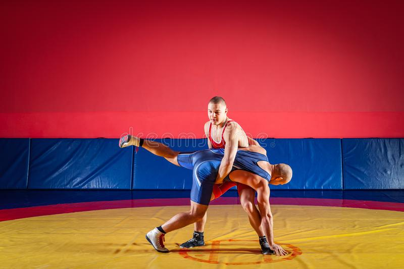 The concept of fair wrestling. Two strong wrestlers in blue and red wrestling tights are wrestlng and making a suplex wrestling on a yellow wrestling carpet in royalty free stock photography