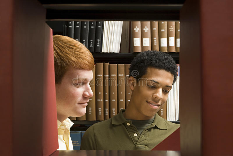 Two students reading in the library royalty free stock image