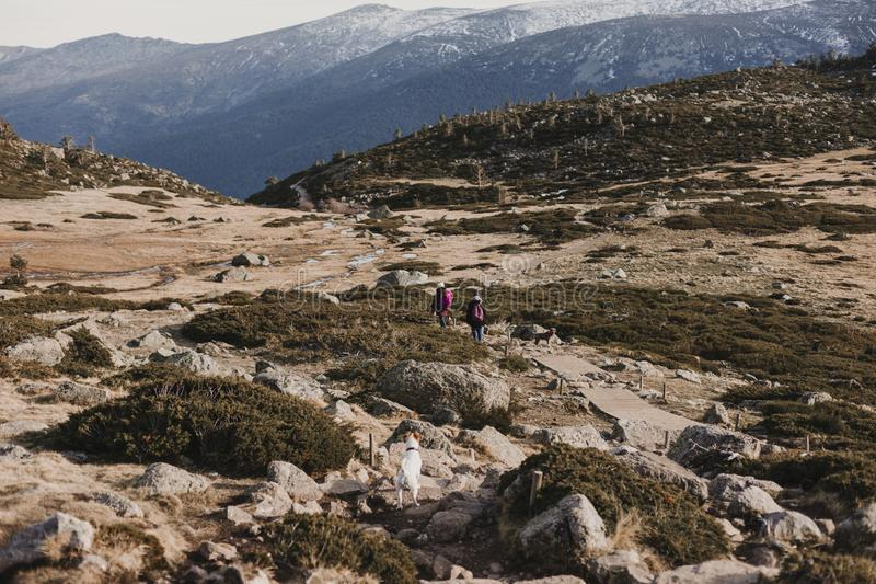 Two successful hiker woman friends enjoy the view on mountain peak. Happy backpackers walking in nature stock photos