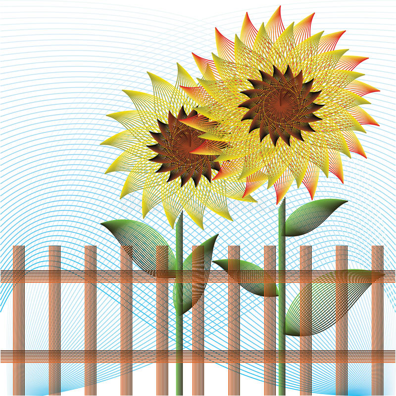 Download Two sunflowers stock vector. Image of blue, border, blossom - 31208568