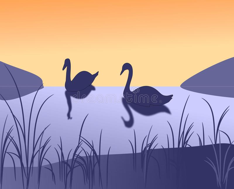Download Two Swans stock illustration. Image of design, feathered - 20385143