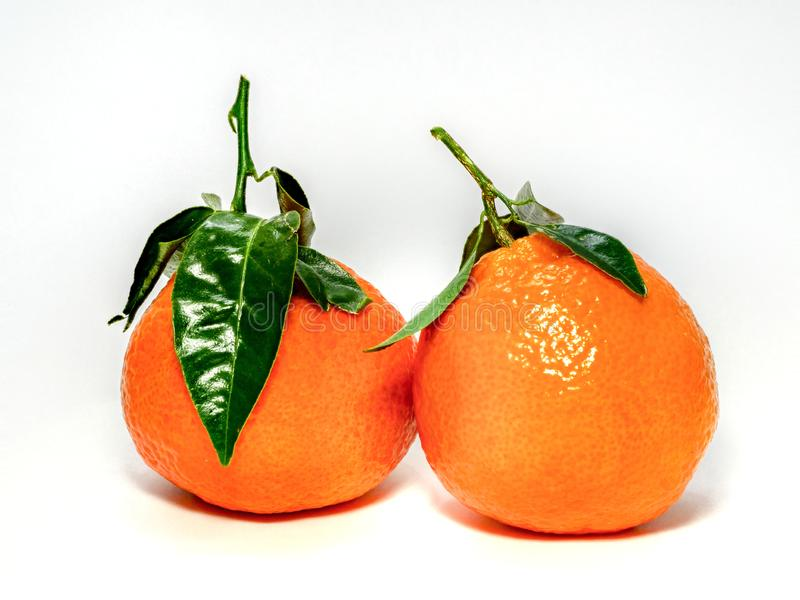 0620 Mandarins with stem and leaves stock photography