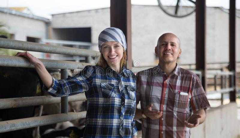 Two technicians posing near cowhouse in modern farm. Couple of Two technicians posing near cowhouse in modern farm royalty free stock image