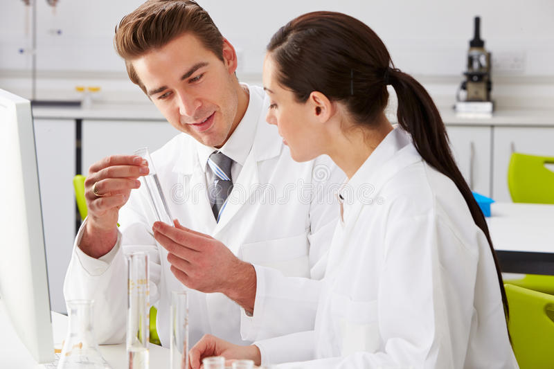 Two Technicians Working In Laboratory royalty free stock images