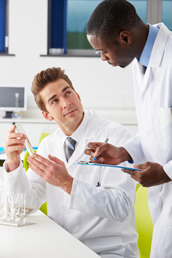 Two Technicians Working In Laboratory royalty free stock photos