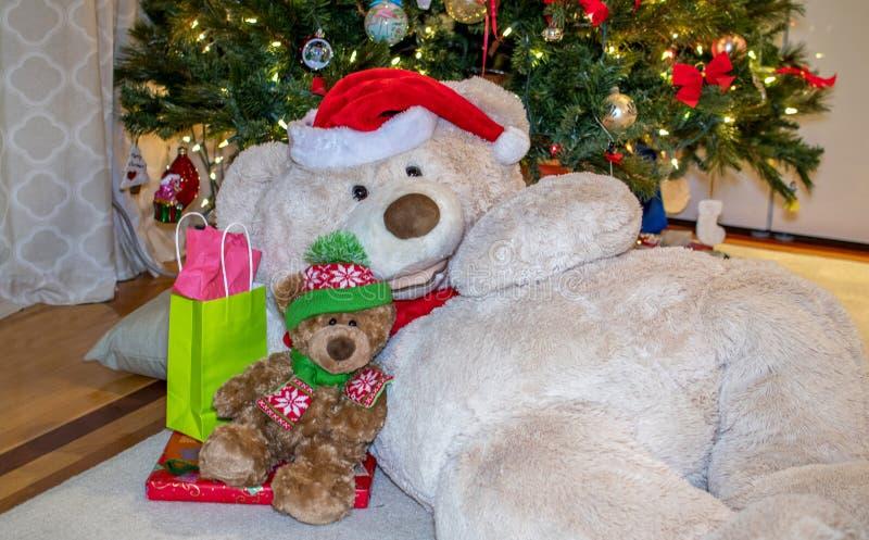 Teddy bears cuddle for Christmas royalty free stock photo