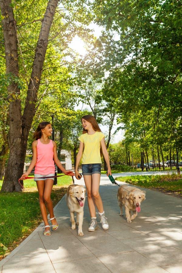 Girl Walking Two Dogs