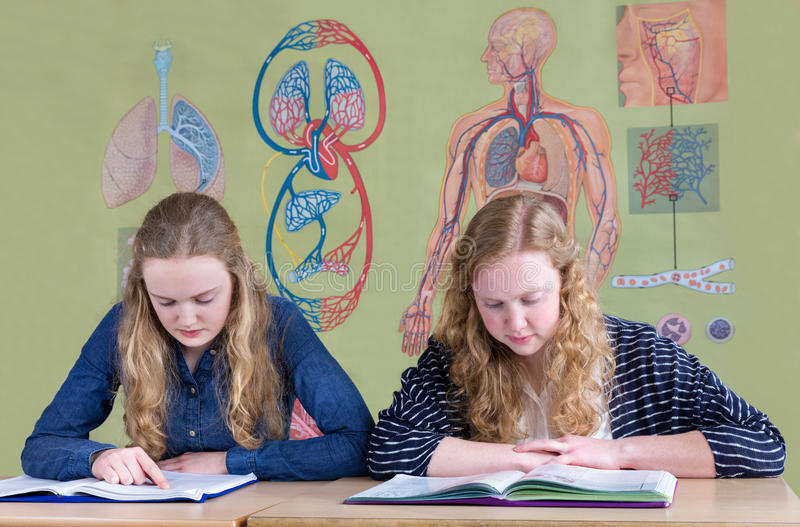 Two teenage girls reading text books with biology wall chart royalty free stock photos