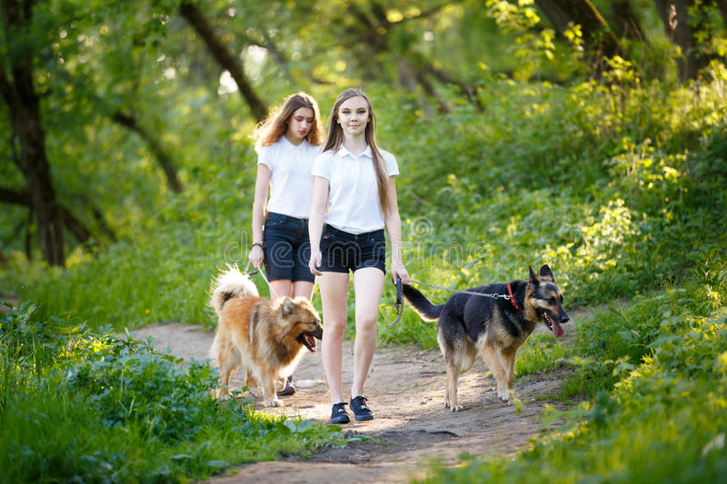 Two teenage girls walking with her dogs in park stock photos