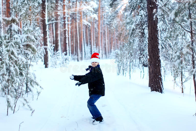 Two teenagers in Christmas hats Santa Claus having fun in the sn. Ow-covered forest playing in the snow royalty free stock photo