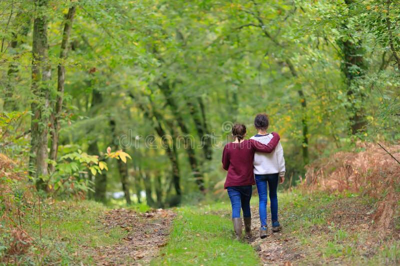 Two teenagers walking together royalty free stock image