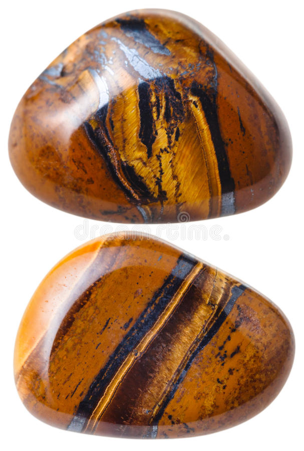 Two Tiger's eye (Tigers eye, Tiger eye) gemstones. Natural mineral gem stone - two Tiger's eye (Tigers eye, Tiger eye) gemstones isolated on white background royalty free stock images