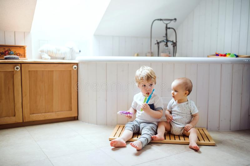 Two toddler children brushing teeth in the bathroom at home. Two toddler children sitting on the floor and brushing teeth in the bathroom at home stock photos