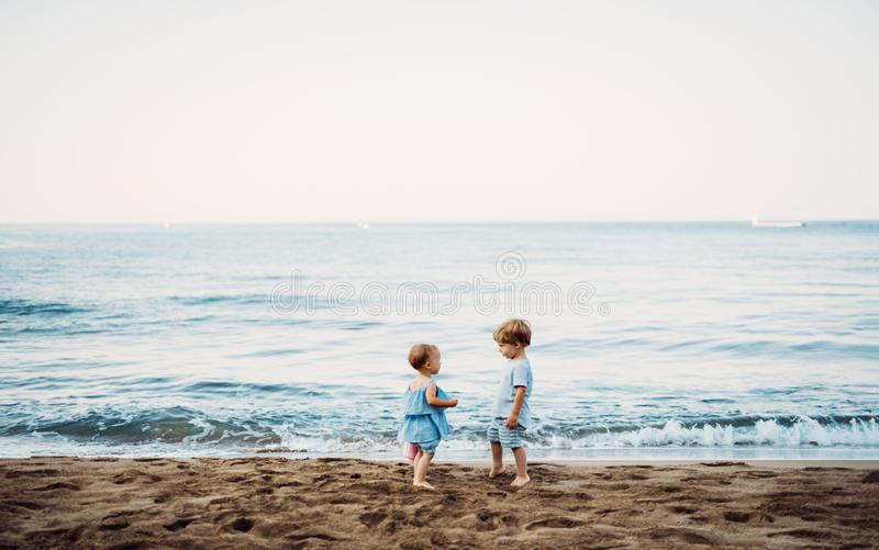Two toddler children playing on sand beach on summer holiday. royalty free stock images