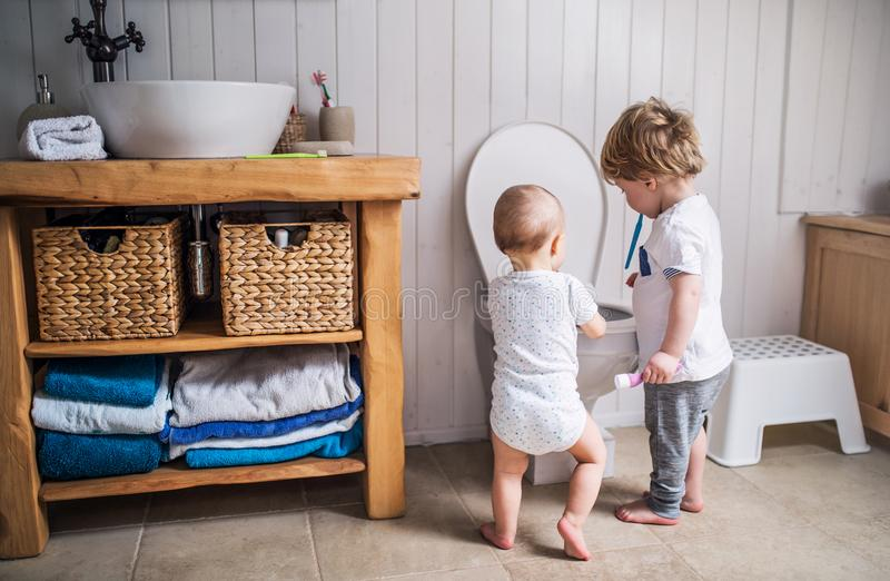 Two toddler children with toothbrush standing by the toilet in the bathroom at home. stock image
