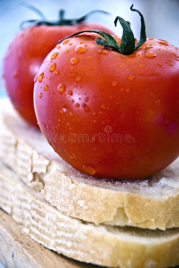 Two tomato and bread royalty free stock photos