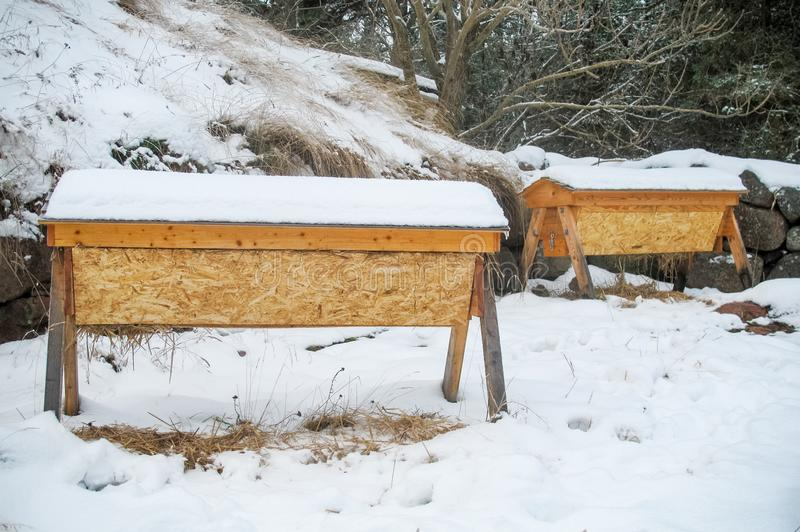 Two top bar hives covered in snow in winter. The bees are resting inside royalty free stock photos