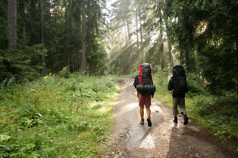 Download Two tourists stock image. Image of crest, male, nature - 6364505