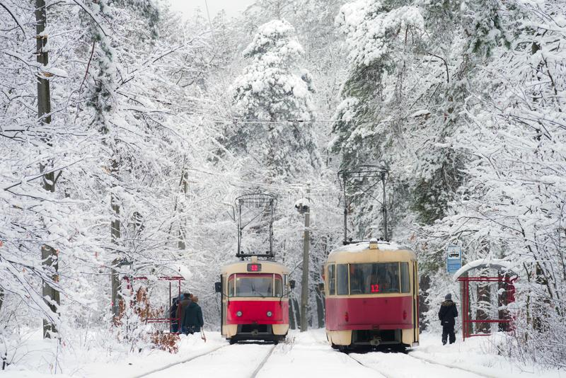 Two trams met at a tram stop in the winter forest. royalty free stock photos