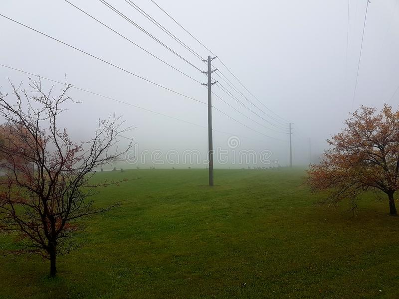 Foggy Field with Utility Pole. Two trees on the side with one utility pole in the center sorrounded by a foggy cloudy environment stock photo