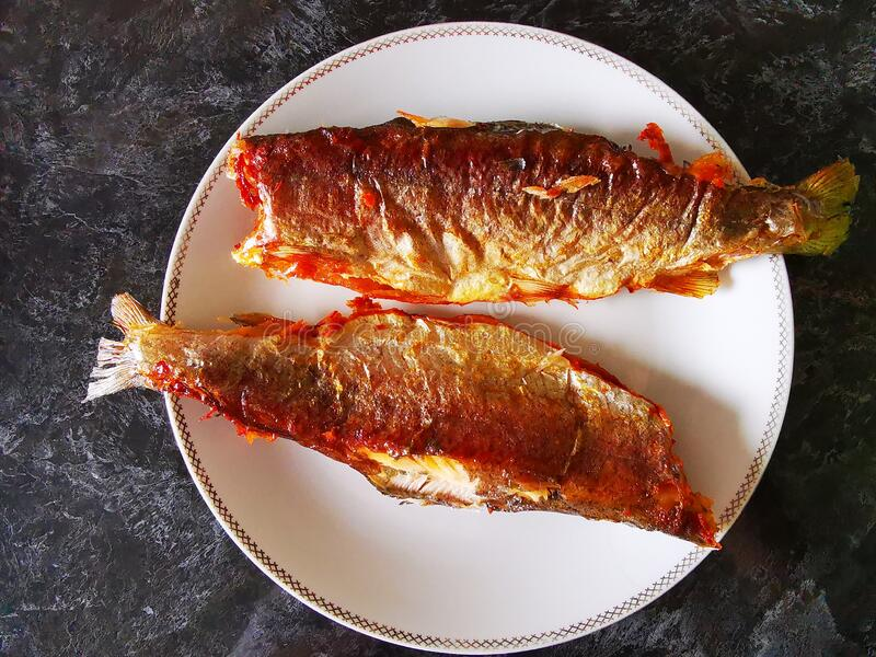 Two trout cooked in the oven royalty free stock photography