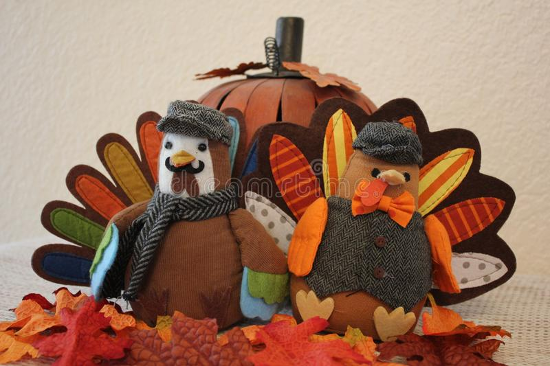Two Turkeys and a Pumpkin stock images